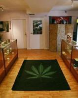 San Leandro Should Wait Before Licensing a Third Marijuana Dispensary